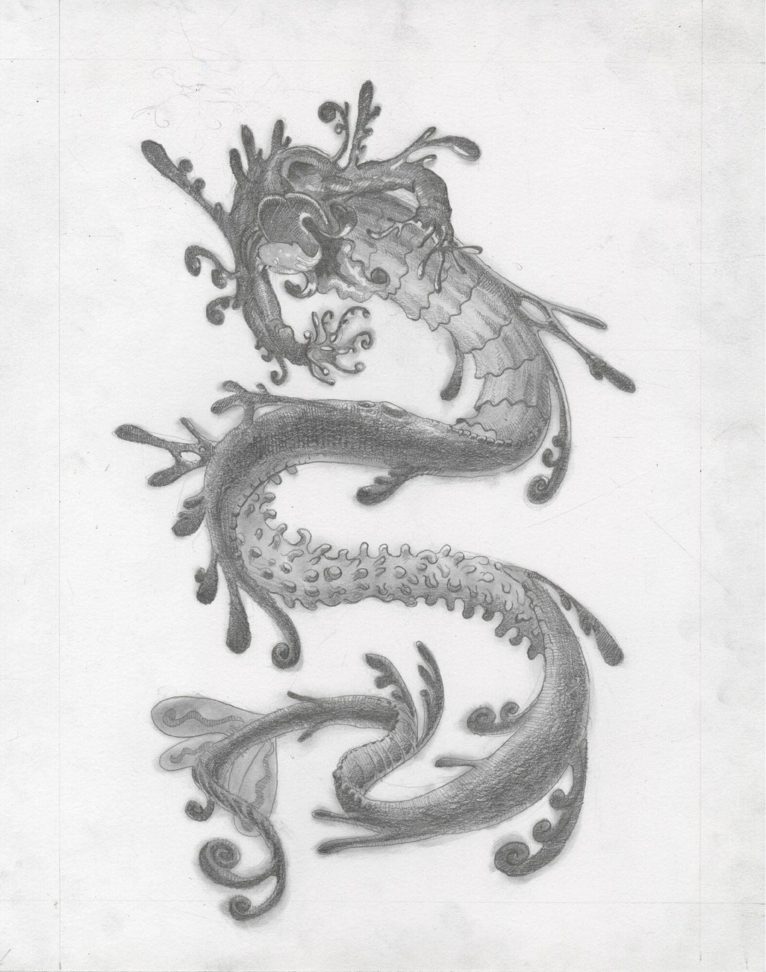 Graphite illustration for Ichorseed