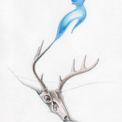 Julian weiler deer ghost