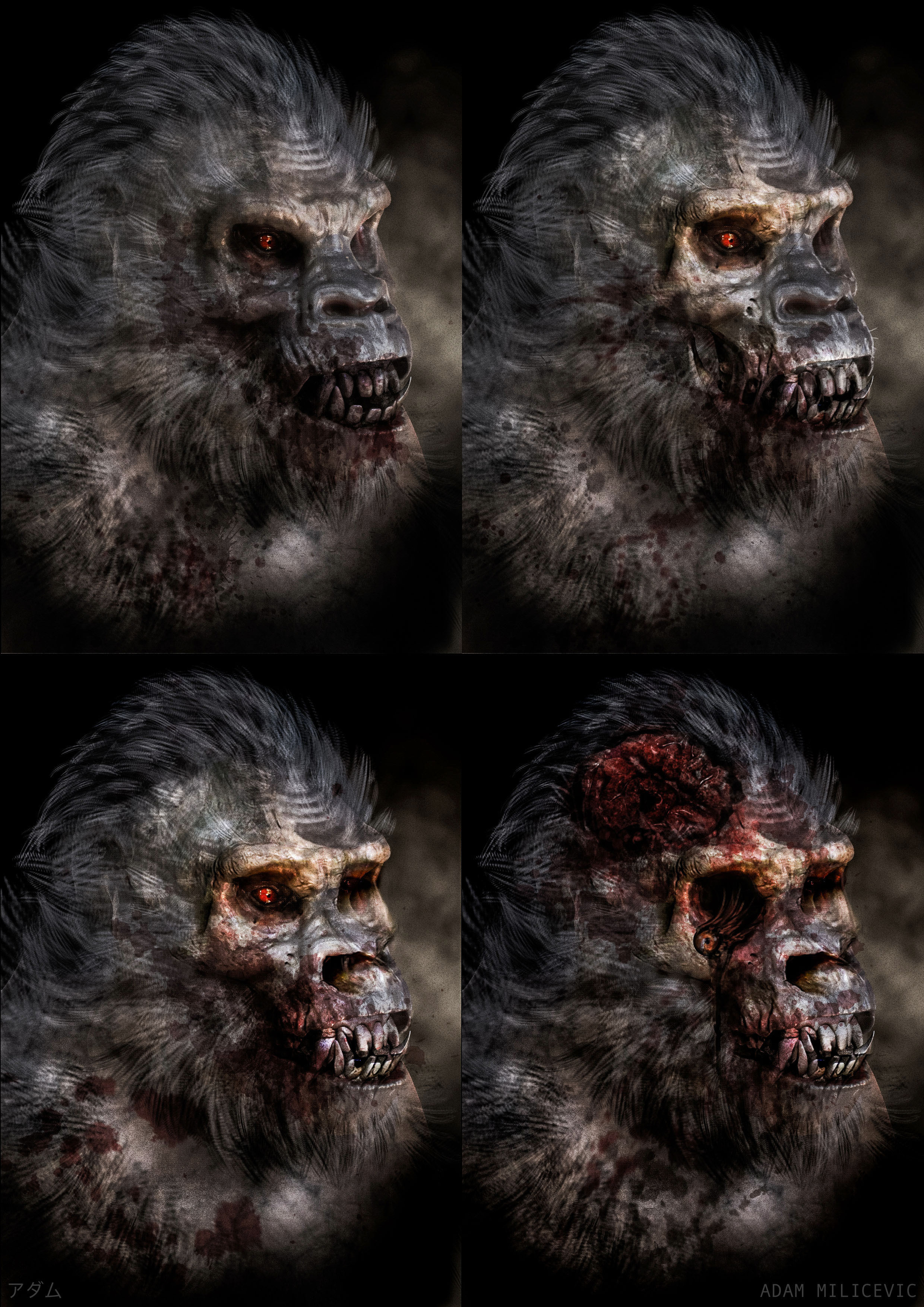 Gorilla Rot Styles