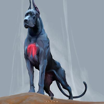 Ilda baof dog crop 1