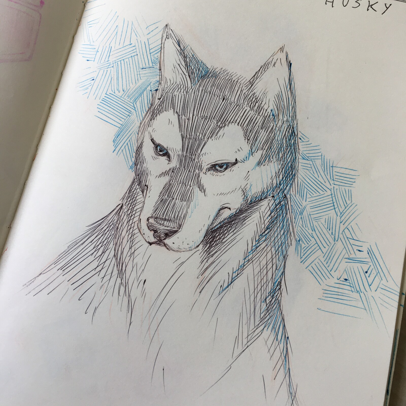 06-Husky