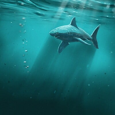 Sebastien linage water shark