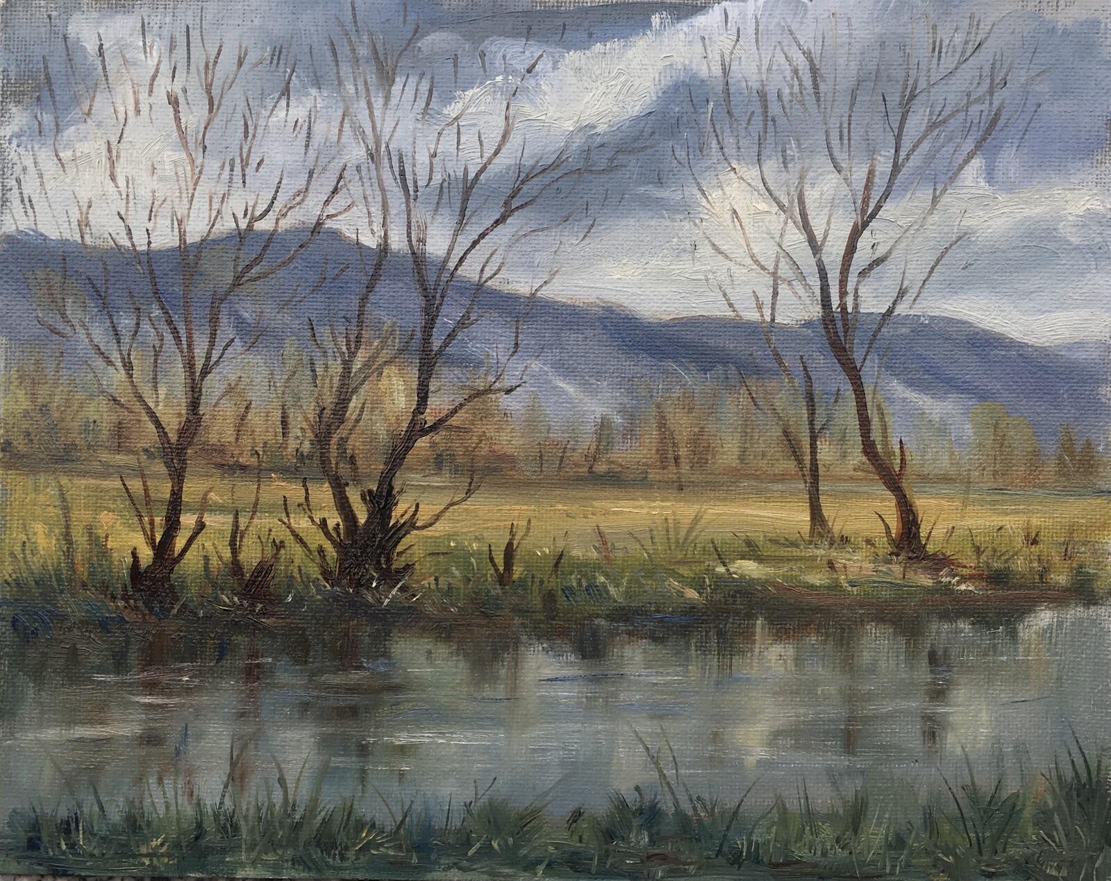 Winter on Tâmega