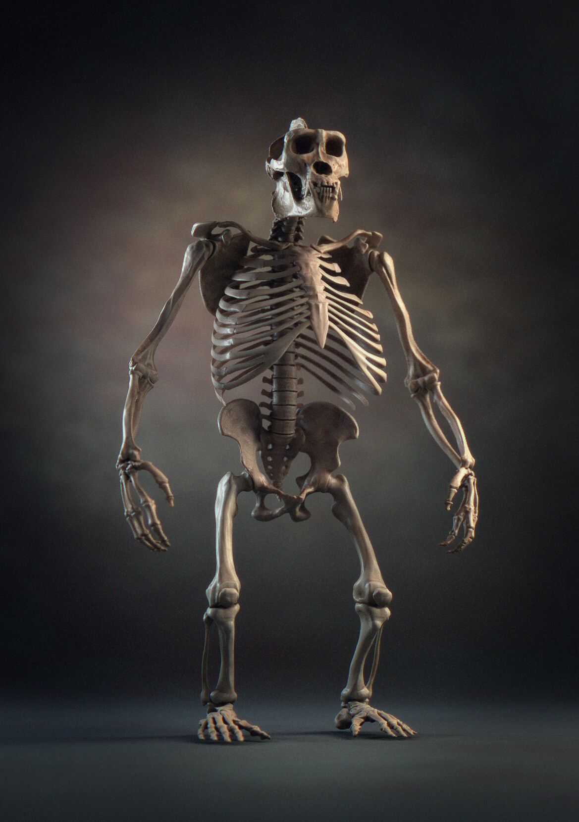 Skeleton available as ZTool