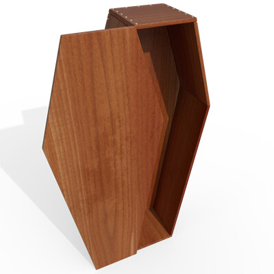 Joseph moniz woodencoffin001d