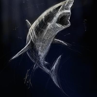 Roxane lapa shark