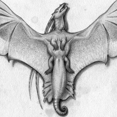 Tiina purin lizardspecimen