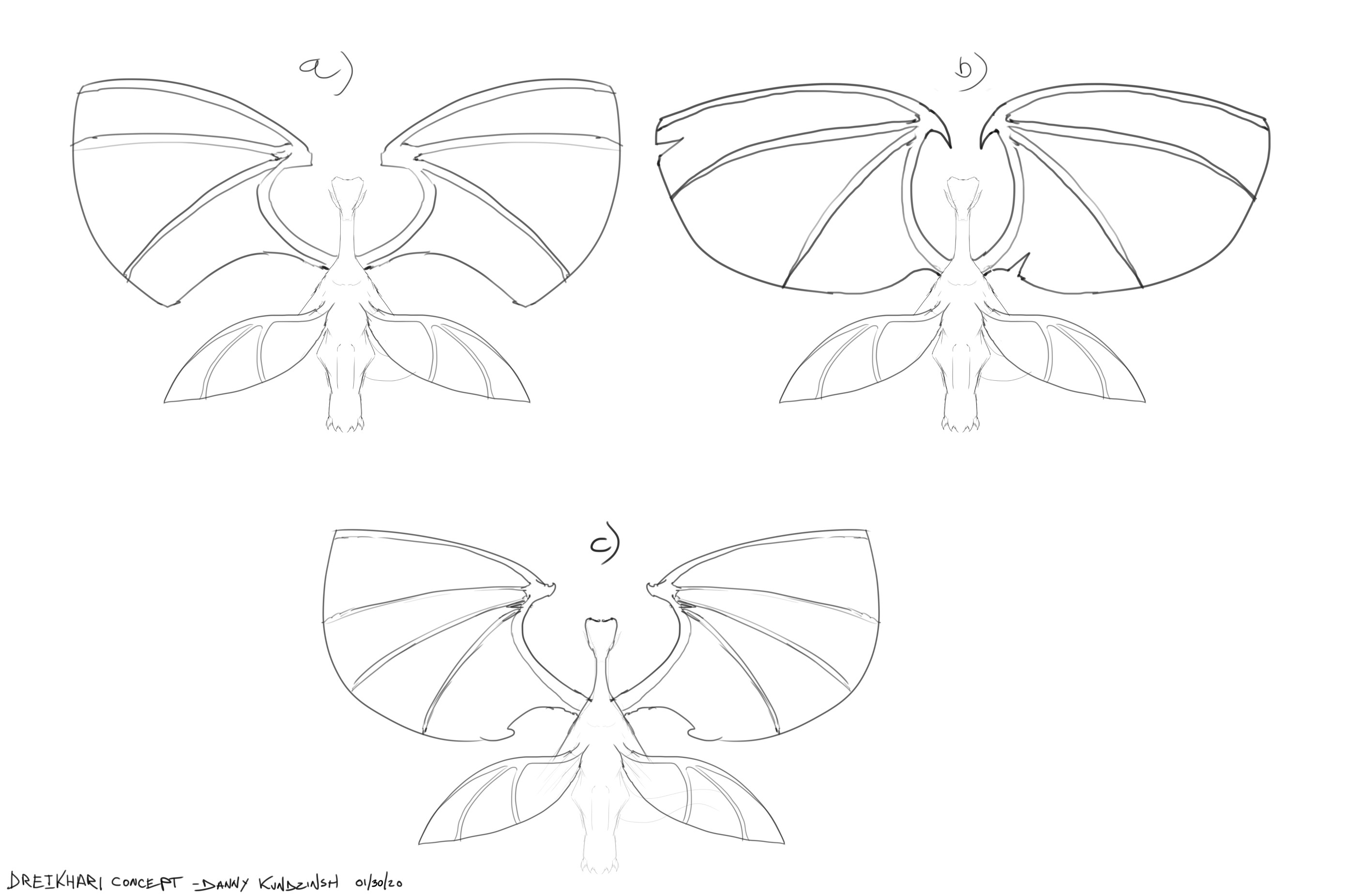 Silhouette and wing variations