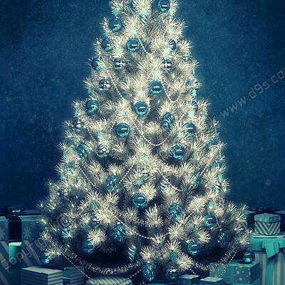 Lizzie prusaczyk d9s co festive azure