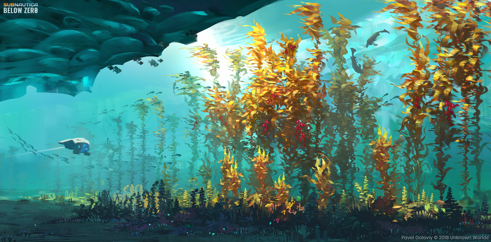 Arctic kelp forest.