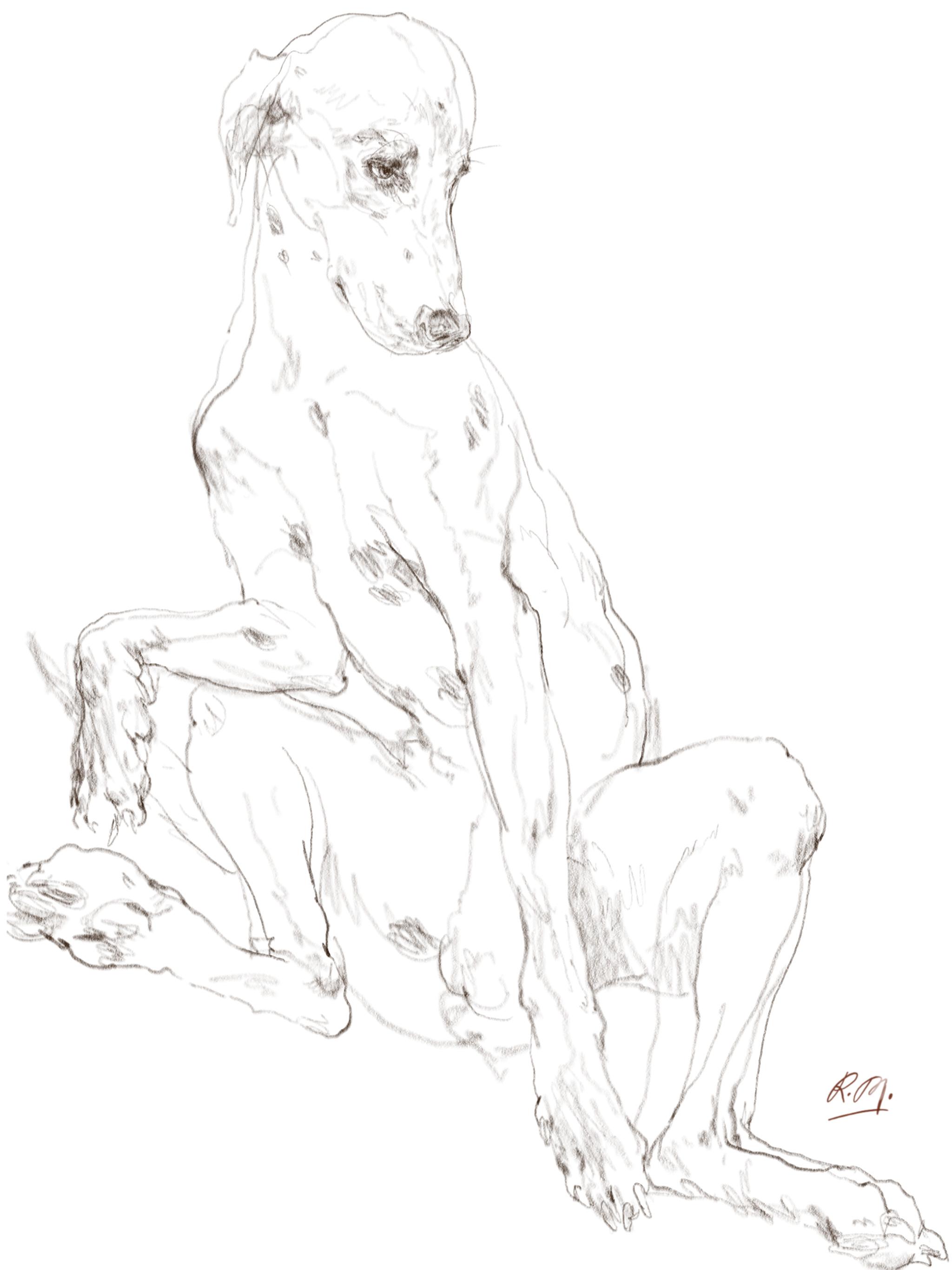 Romeo - Drawing