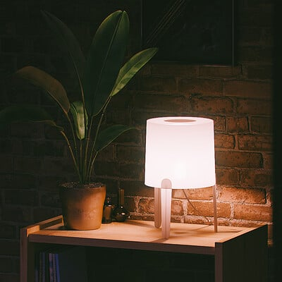 Alireza seifi lampshade 002