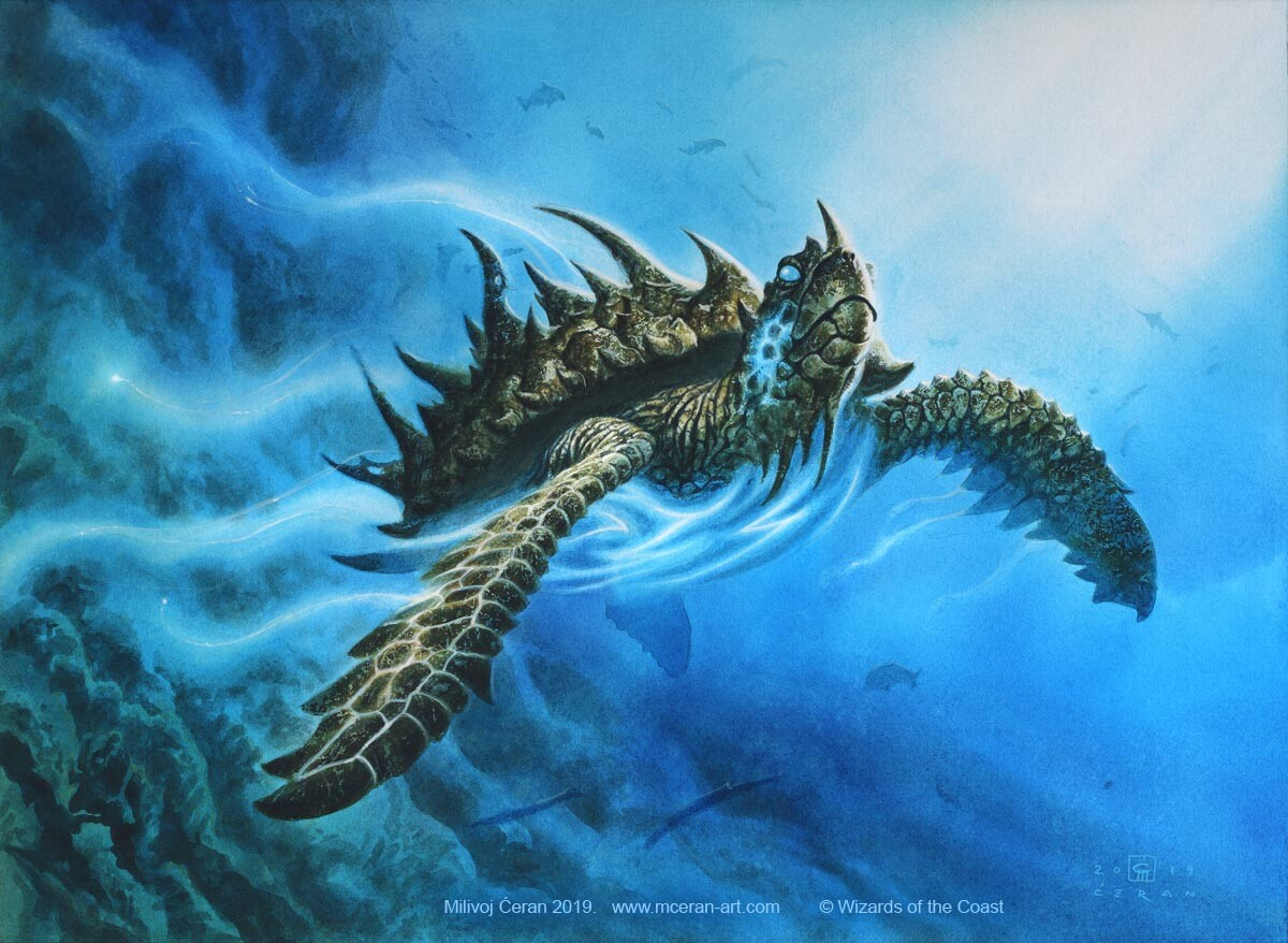 """Aegis Turtle"" Milivoj Ćeran 2019.