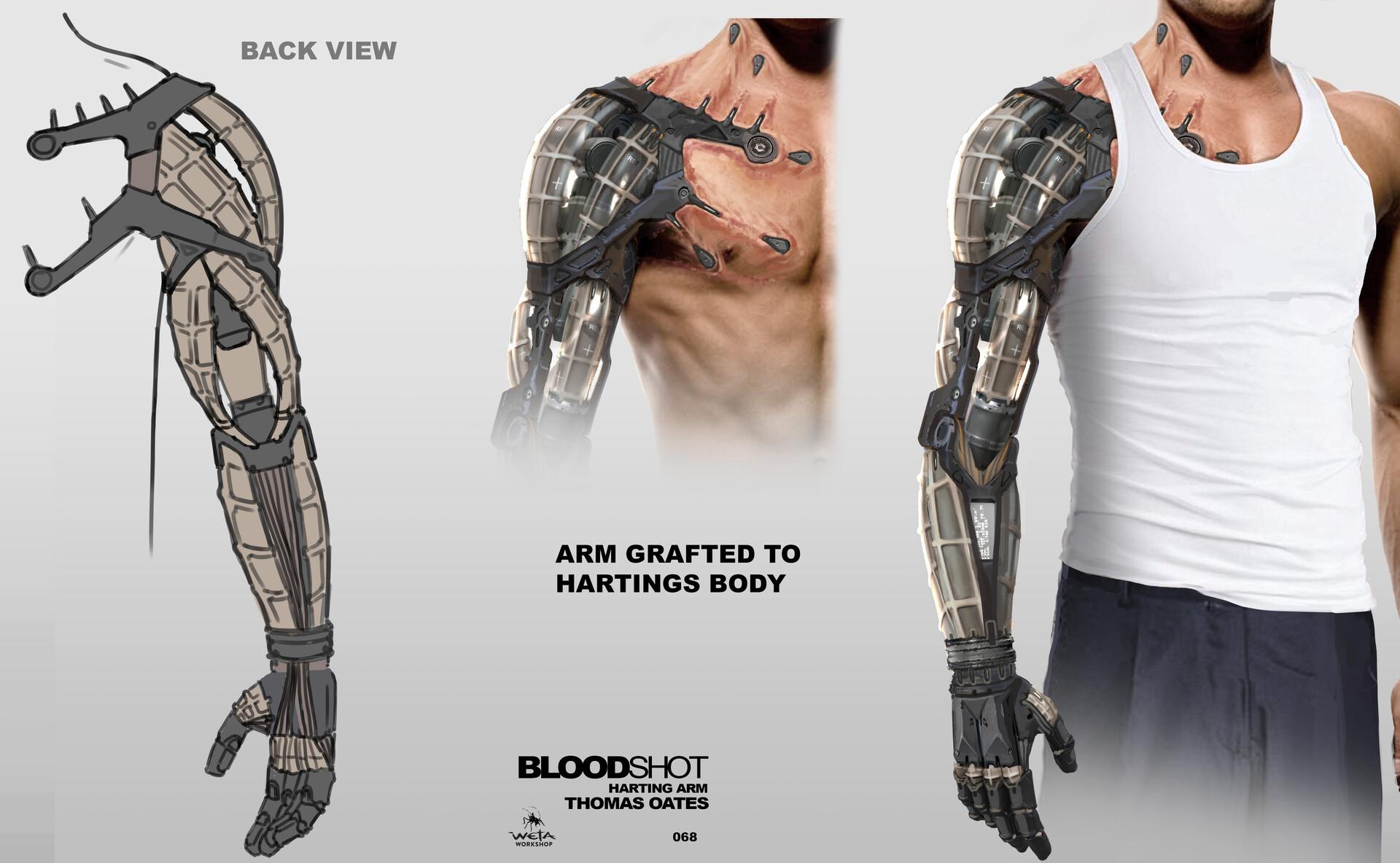 Harting Arm - Artist: Thomas Oates