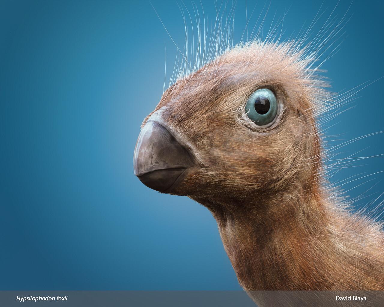 Hypsilophodon Portrait
