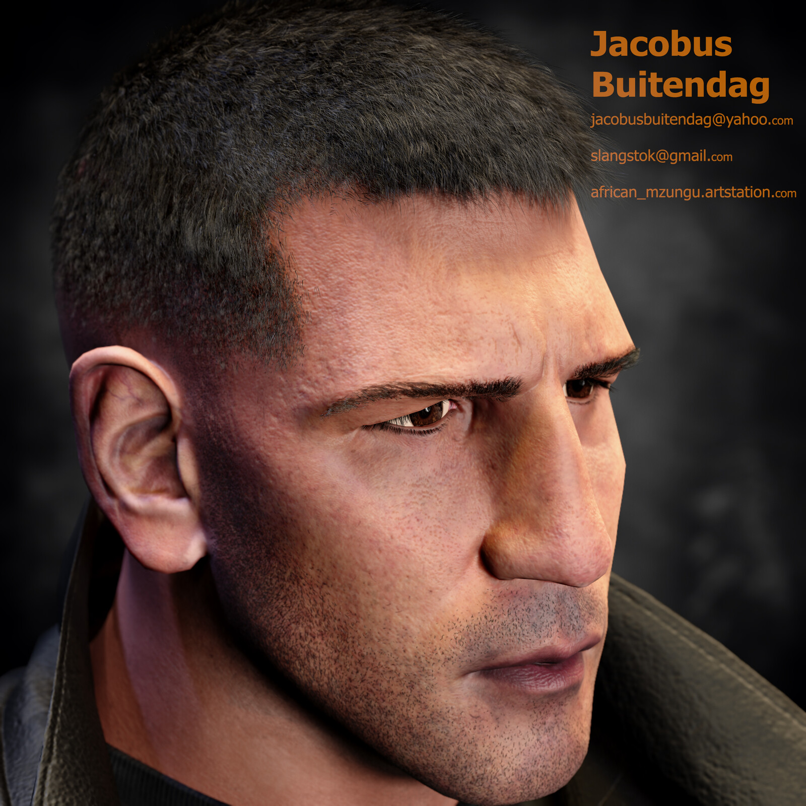 Side view of the face (Low res render)
