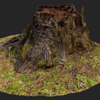 Austin labarbera austinlabarbera stump1