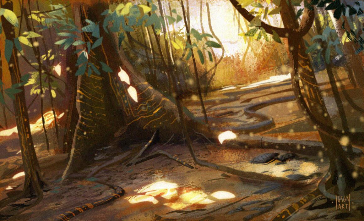 Wagadu rainforest exploration