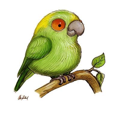 Okan bulbul green parrot 001
