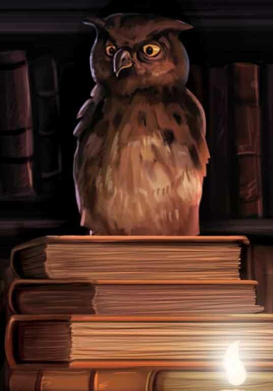 pet owl of old dark wizard