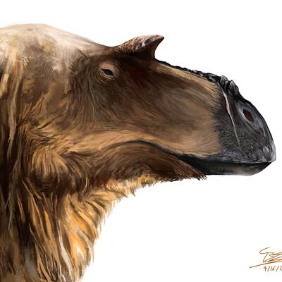 Brennan stokkermans albertosaurus young recovered