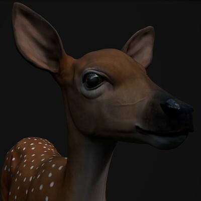 Piotr glabinski deer4