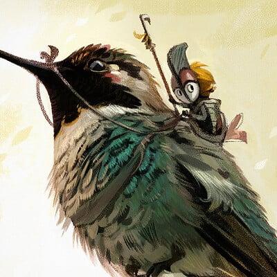 Vivien lulkowski kolibri