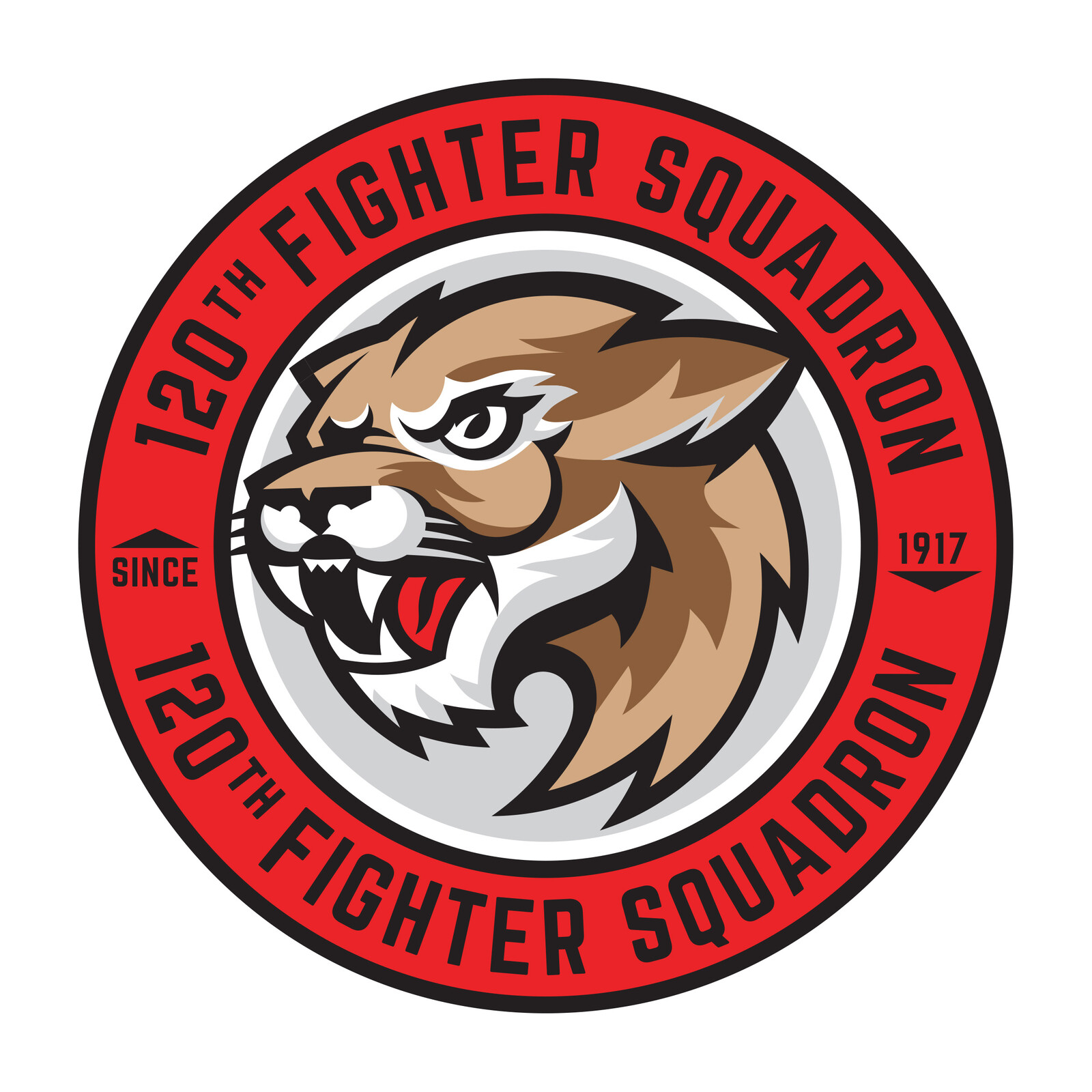 120th Fighter Squadron Patch reDesign