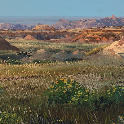 Mike mccain badlands study