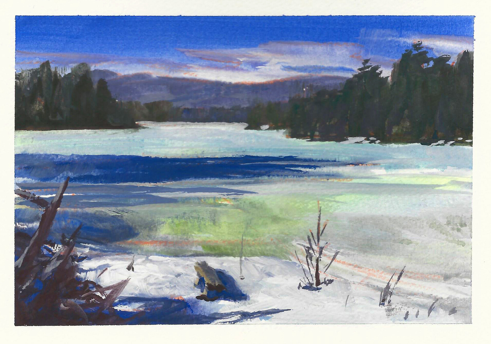 photostudy of the lake where I live in early spring