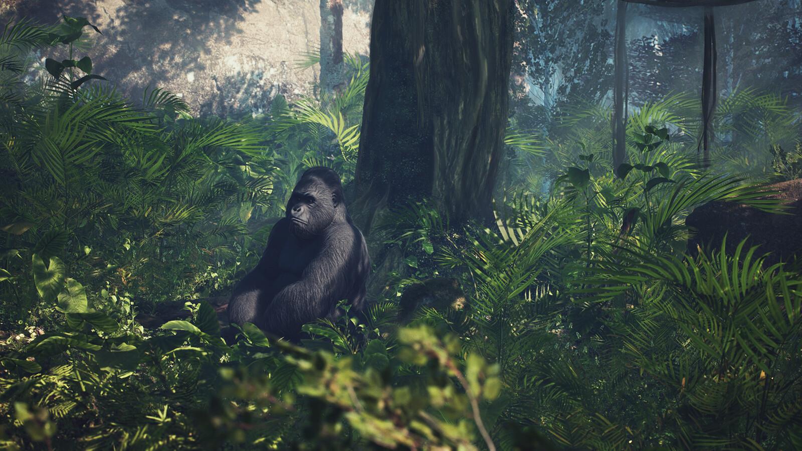 Jungle Chillin
