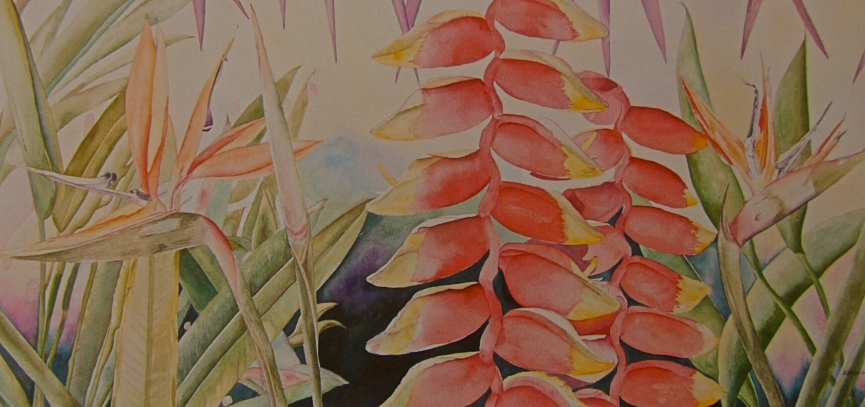 Tropical Flowers II