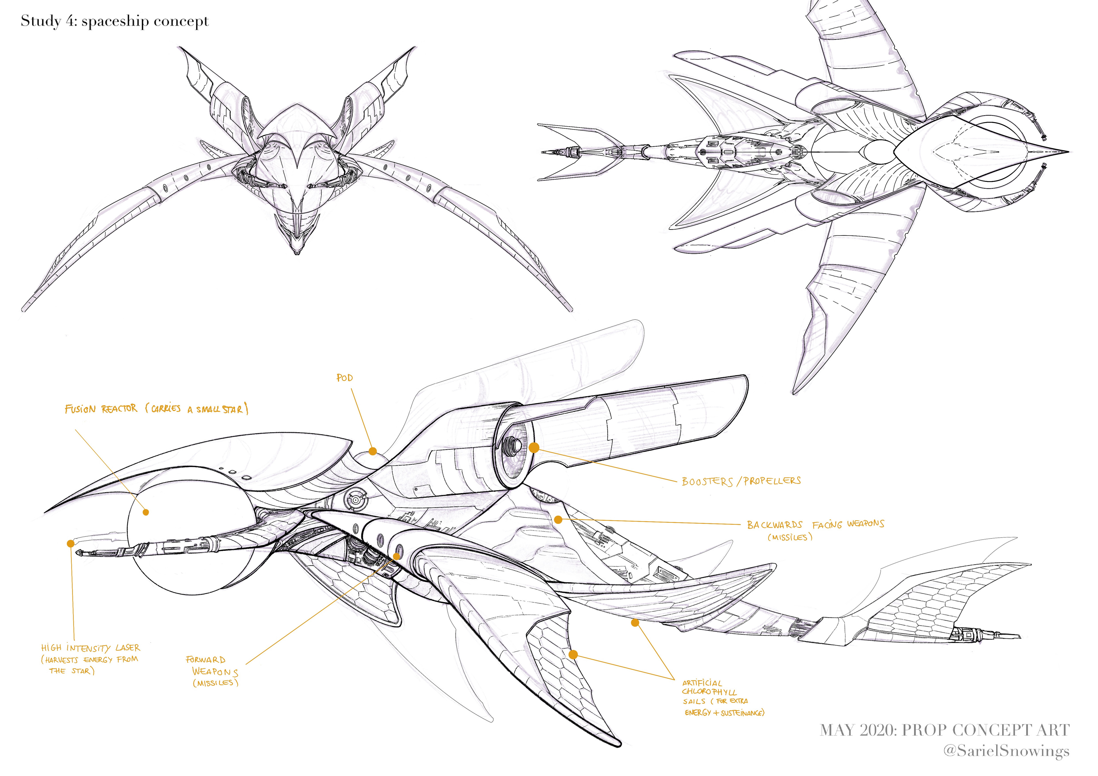 """Lineart of profile, front and upper view + design """"backstory"""" details."""