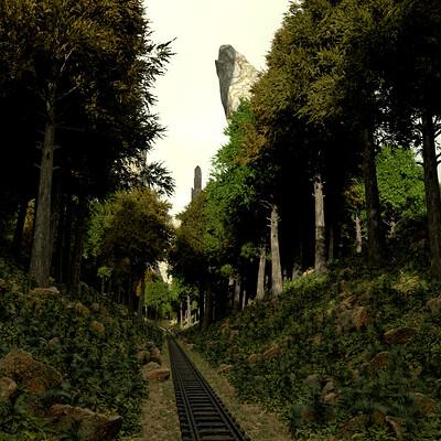 Saman khorram forest 1