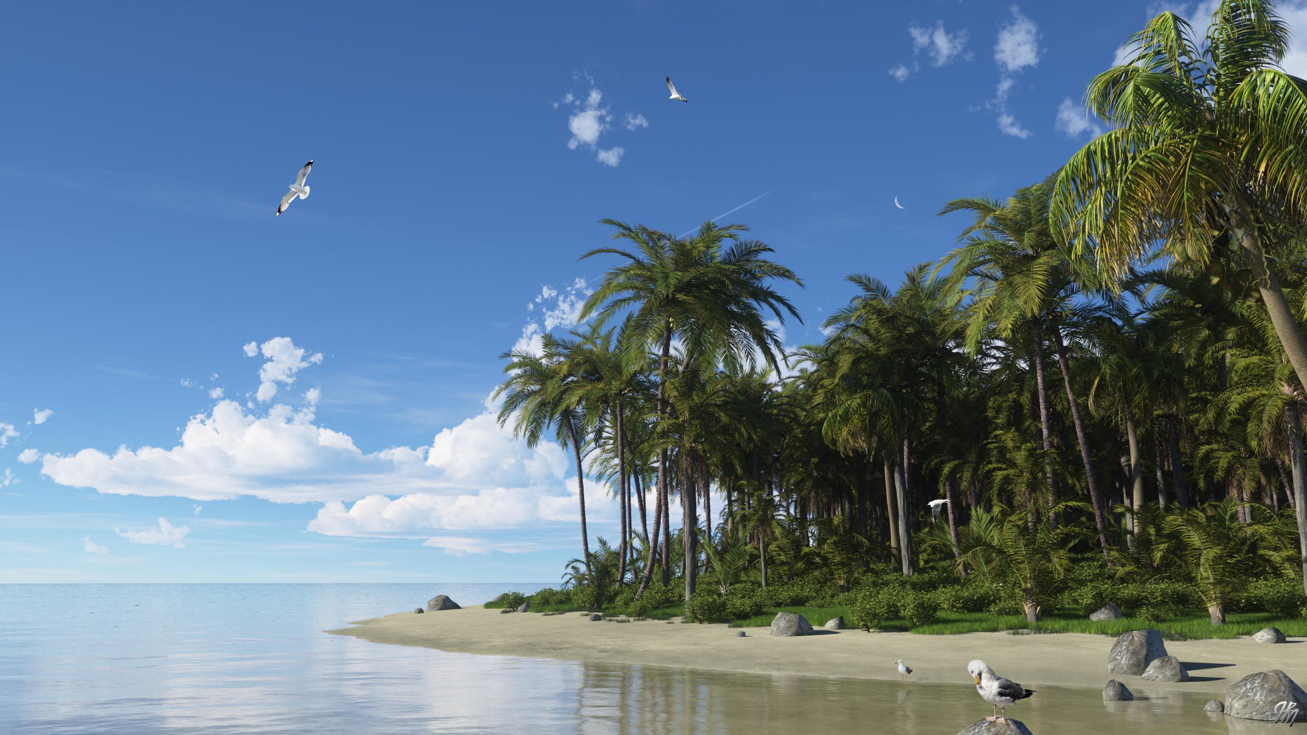 Island Dreams TG20200417