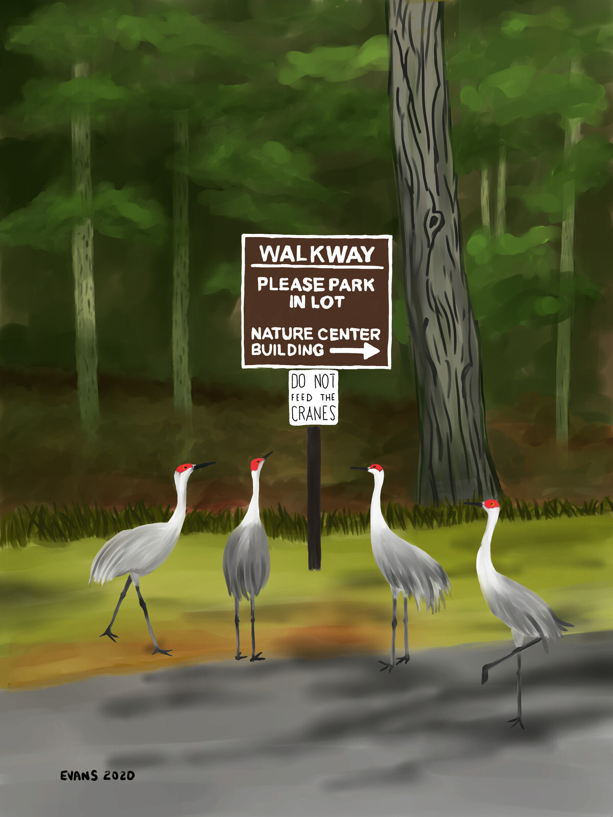 Do Not Feed the Cranes
