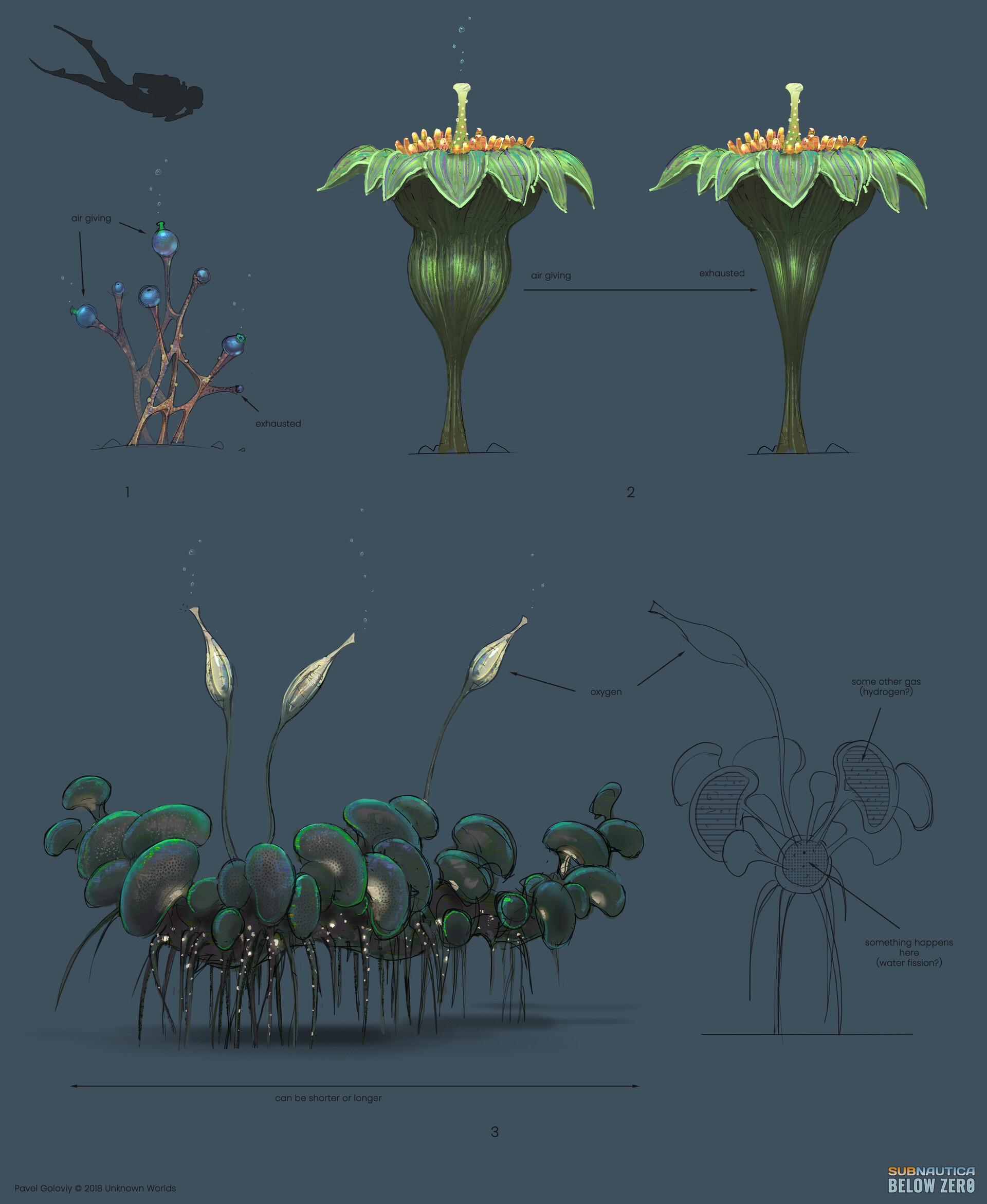 Air giving plant design ideas