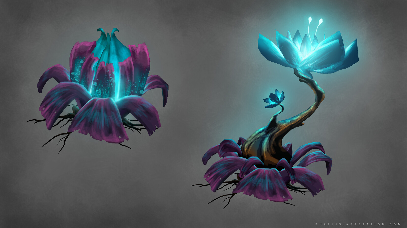 ASRA - Plants and crystals concepts