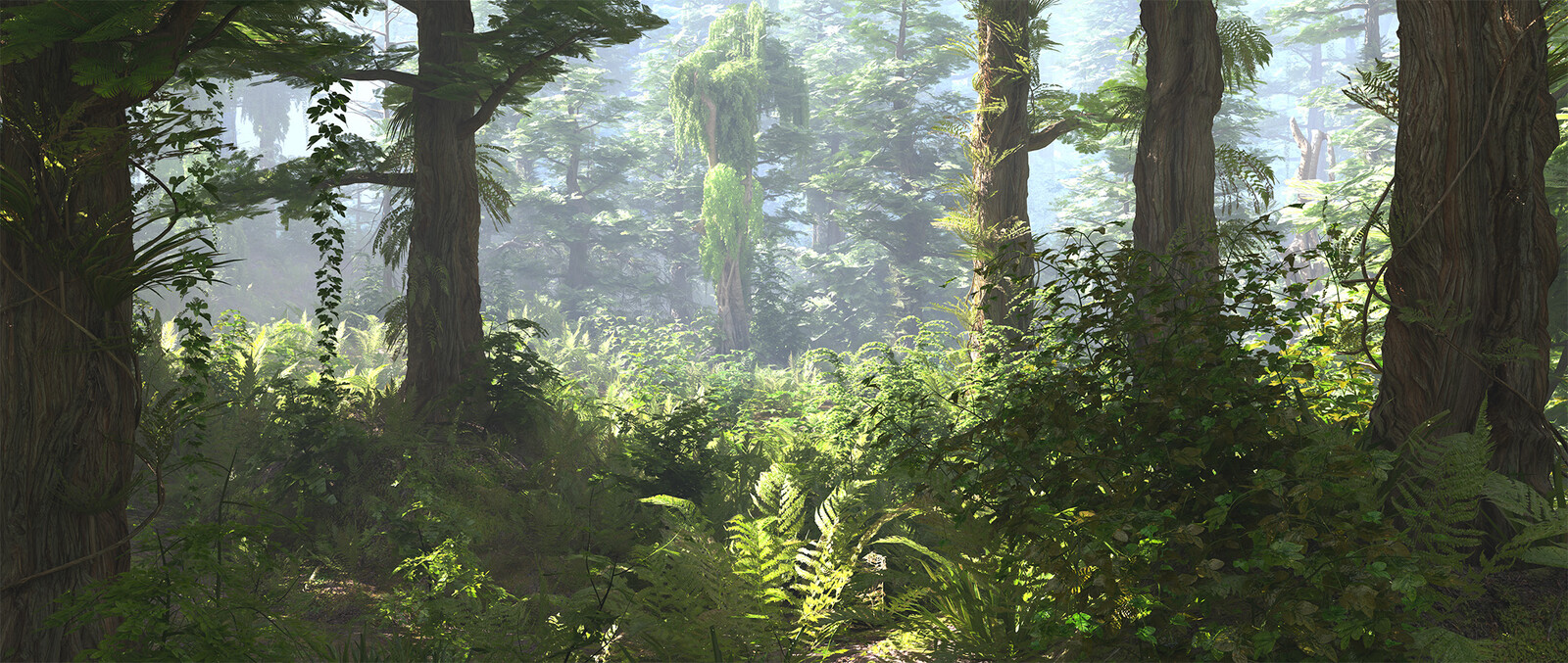 Forest Environment Visualization