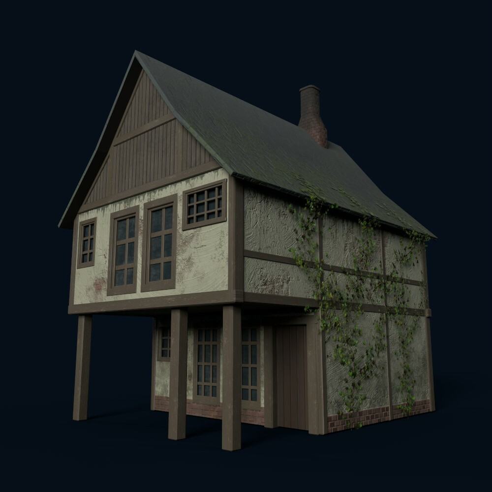 House 3  (model by Thomas De Neef)