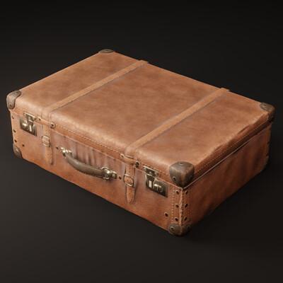 Mesut can kaptan suitcase1