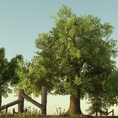 Jordan cameron trees 14