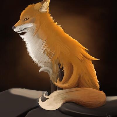 Aaron truehitt foxn2