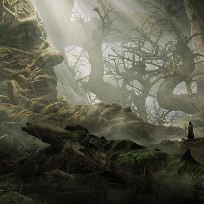 Maciej drabik forest side d2
