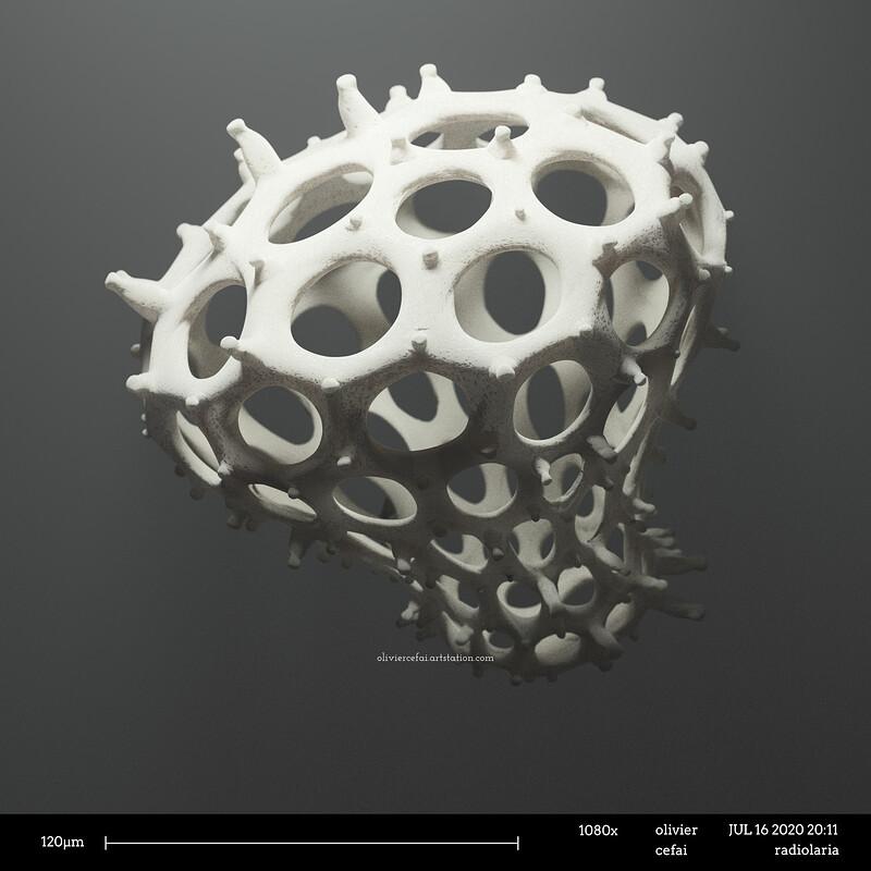 Radiolaria - Procedural micro-organisms