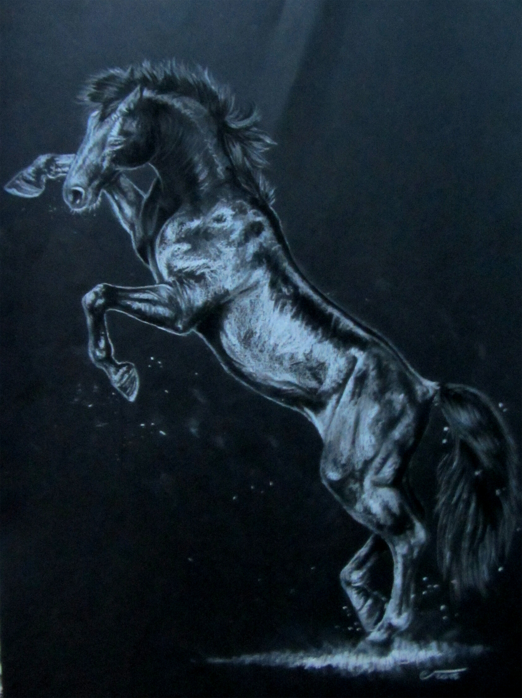 Artstation Rearing Horse Pencil Drawing Christine Fischer