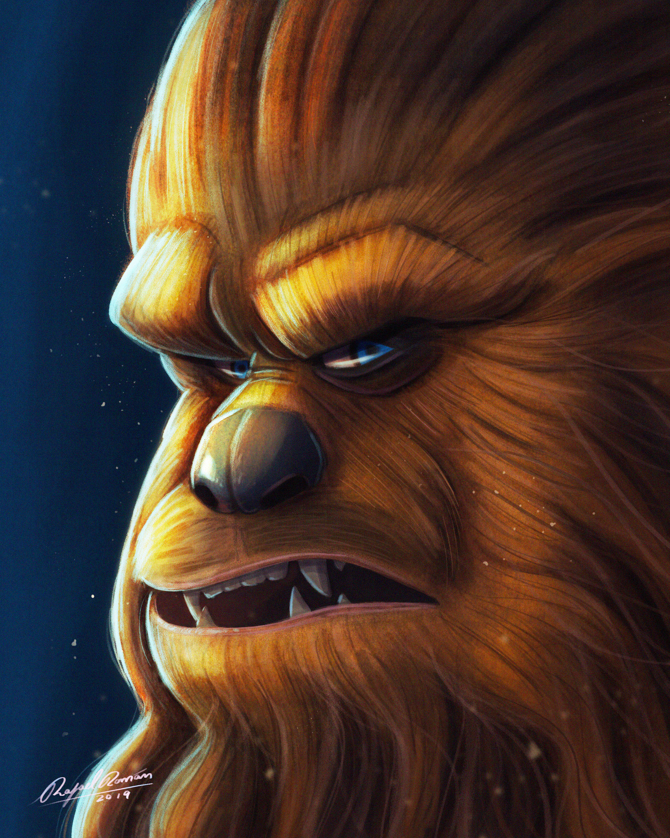 Day 13: Wookie