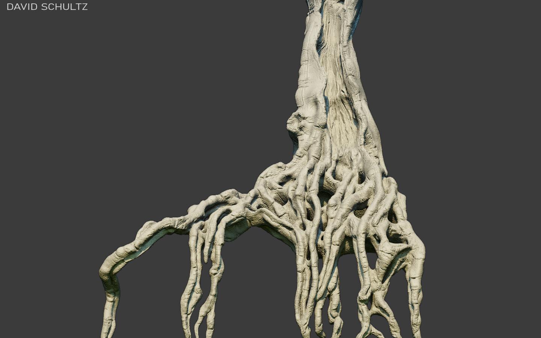 Strangler Tree 02