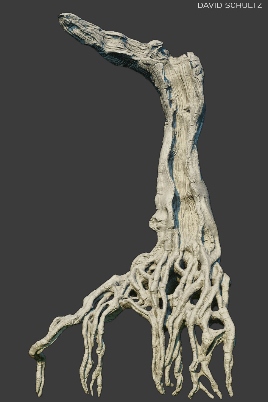 Strangler Tree 01