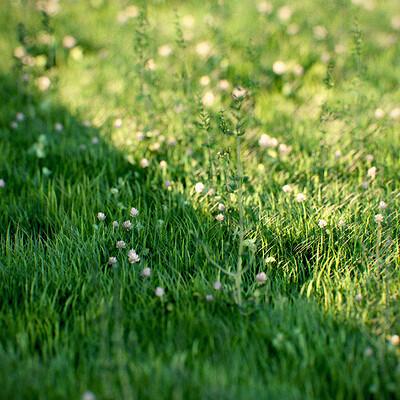 Matt williams grass 00